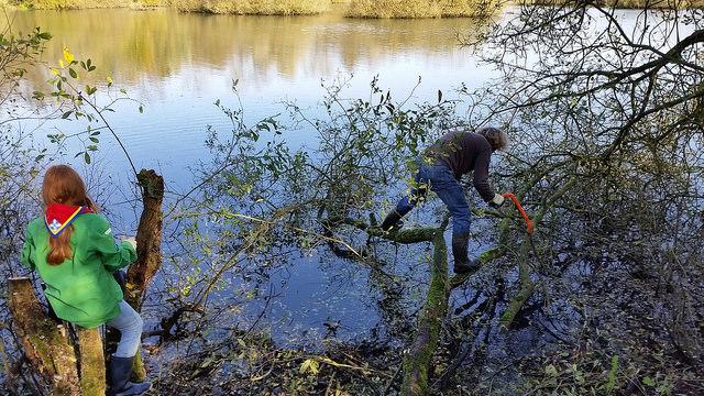 Photo of Otter krijgt verblijfplaats Tichelgaten dankzij natuurwerkdag