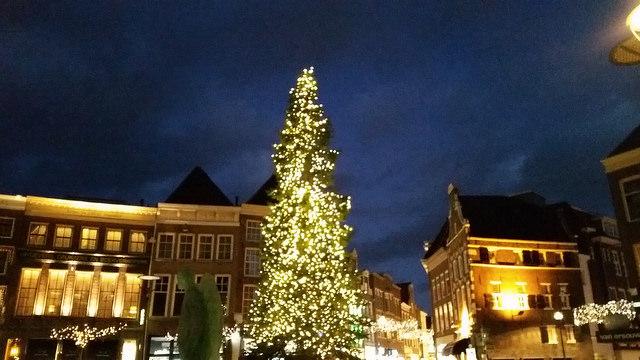 Photo of Kerstboom Grote Markt Zwolle komt dit jaar uit Berkum
