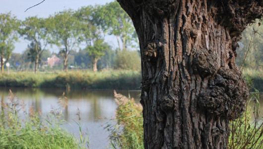 Photo of Water Natuurlijk betreurt koppositie Groot Salland bij lastenstijging