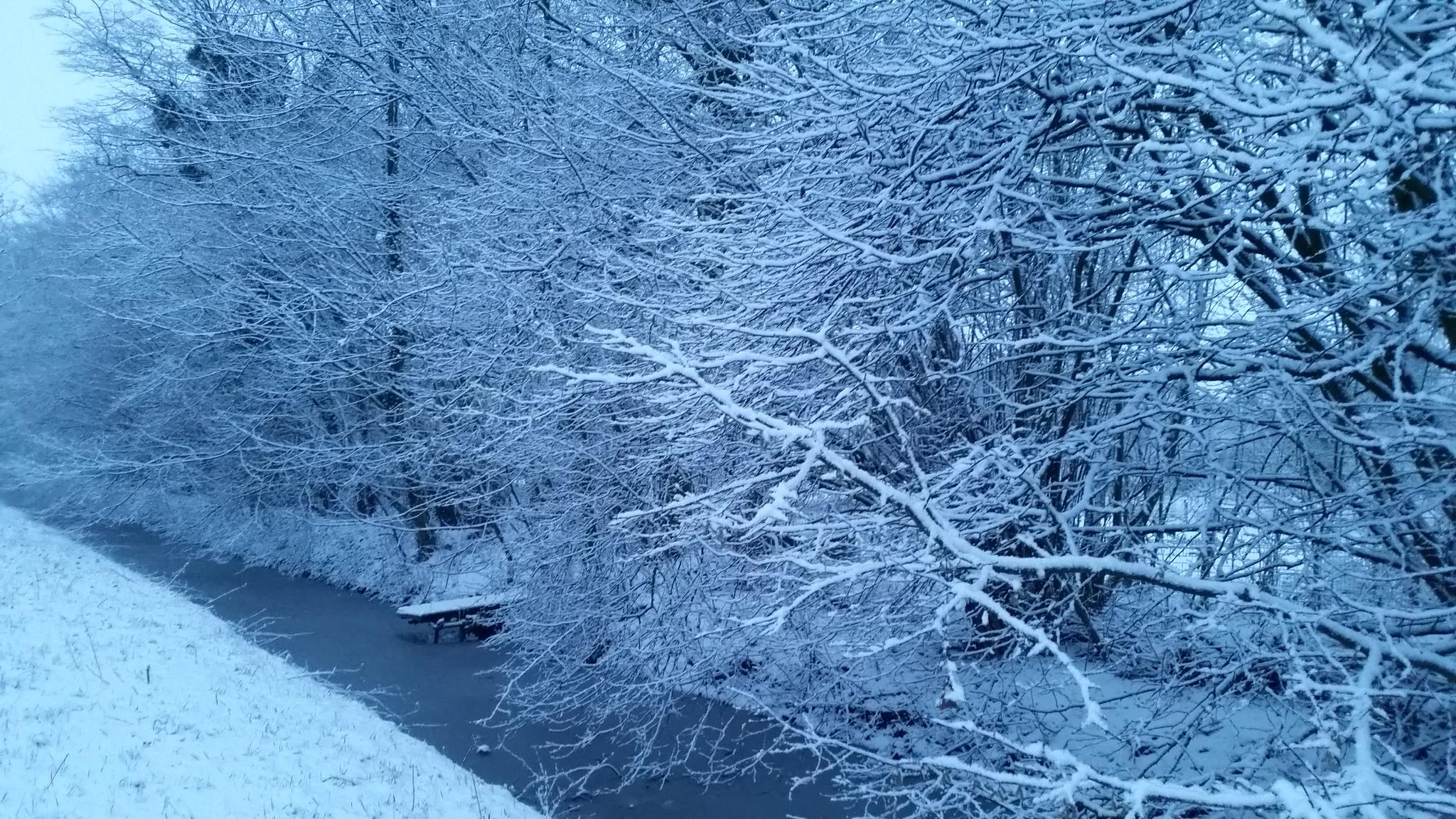 Photo of Eindelijk sneeuw
