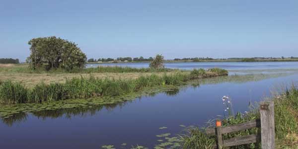 Photo of 31 bewoners IJsseldelta worden opgeleid tot Ambassadeur van het Landschap