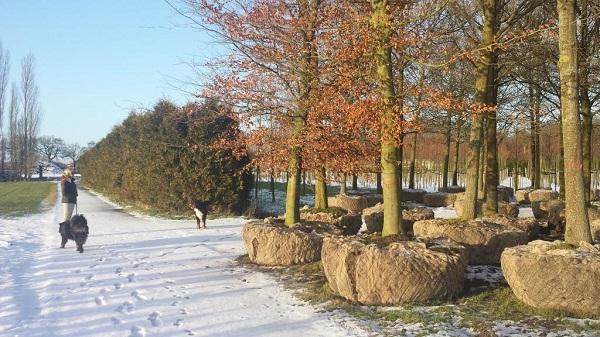 Golftuin Zwolle bomen worden geplaatst