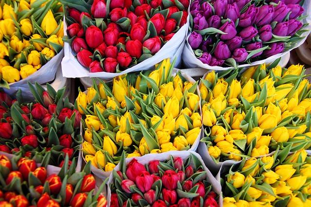 Photo of Opmerkelijk – Jongen koopt bloem voor élk meisje op school