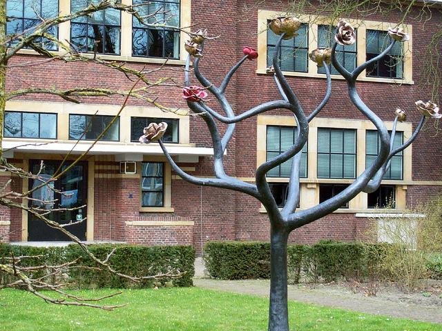 Photo of Celeanum adopteert Joods monument voor oude school Veerallee