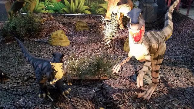Photo of Dinoland begint vorm te krijgen