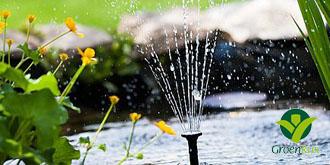 Haal de vijverpomp/filter uit de winterslaap. Zodra de watertemperatuur boven de 8 graden uitkomt, kun je het filter en de pomp weer inschakelen.