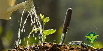 Onlangs nieuwe planten in de grond gezet. Geef ze water als het een periode droog is.  Bij voorkeur één keer één lange watergift dan iedere dag een beetje.