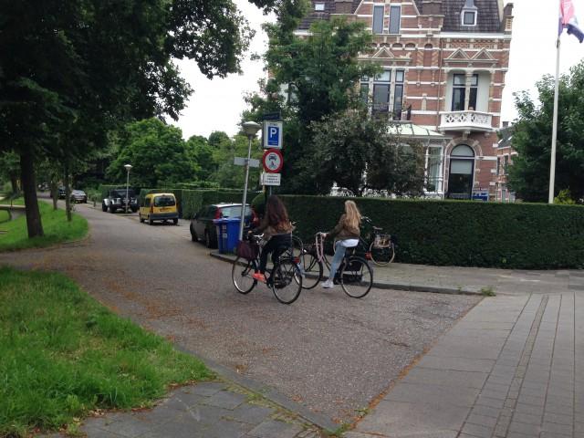 Photo of Herinrichting kruispunt Burgemeester van Roijensingel-Emmawijk
