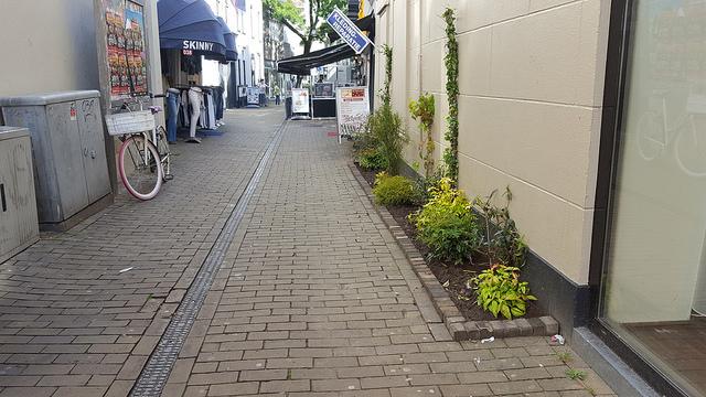 Photo of Winkelgebied Broerenkwartier Zwolle steeds groener en levendiger