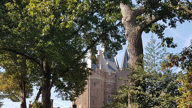 Photo of Ruim 3 ton voor instandhouding Grote Kerk en Sassenpoort