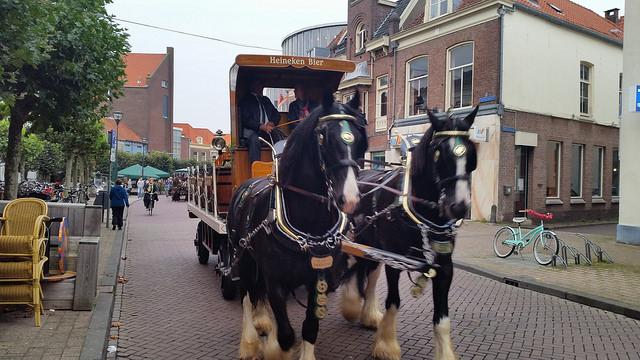 Photo of Bockbier komt zondag aan per schip in Zwolle