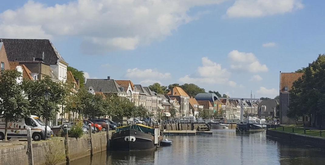 Photo of Zieke kastanjes Thorbeckegracht worden vervangen door iepen
