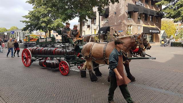 Photo of VIDEO Bokbier aan wal gebracht op Rodetorenplein Zwolle