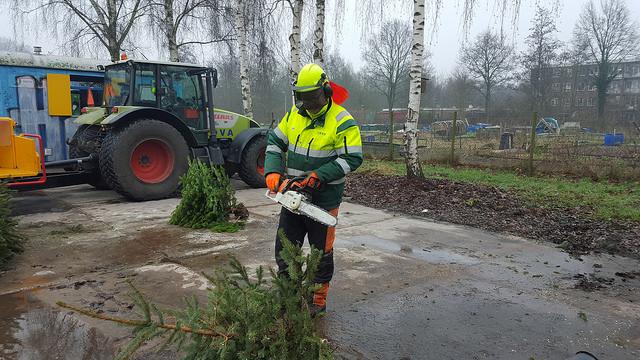 Photo of Kerstbomenactie: Afgedankte kerstbomen inleveren voor een zwemkaartje