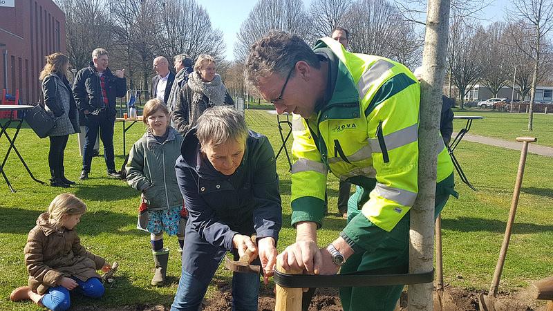 Photo of Herdenkingsboom geplantvoor Zwolse wijkbeheerder Gerard Ballintijn