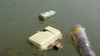 Photo of Plastic vissen aan de vooravond van Stadsfestival