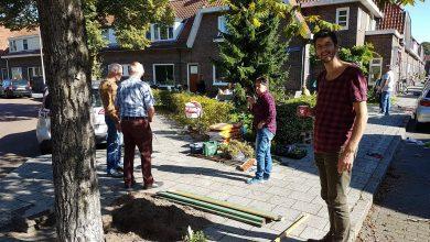 Photo of Buurtinitiatieven maken straat groen tijdens Burendag