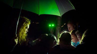 Photo of Sfeervolle, natte editie Nacht van de Nacht in Zwolle