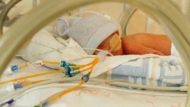 Photo of Sassenpoort kleurt paars om aandacht te vragen voor te vroeg geboren kinderen