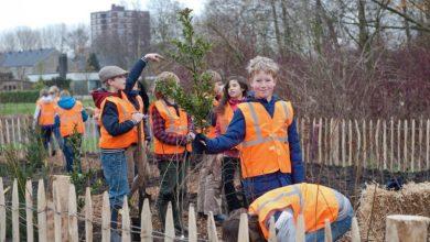 Photo of Zwolse leerlingen planten 30 november Tiny Forest