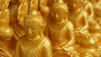 Photo of Blessings & Buddhism ontmoeting