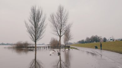 Photo of Versterking IJsseldijk Zwolle-Olst