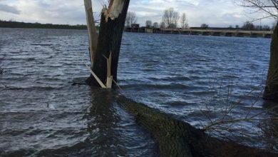 Photo of Storm beschadigde ook dijken