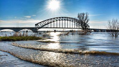 Photo of Foto's: Hoogwater levert prachtige plaatjes op