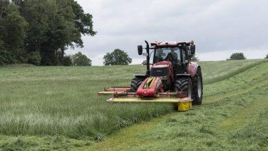 Photo of POP3 subsidieregeling 'Herverkaveling van landbouwbedrijven' open gesteld