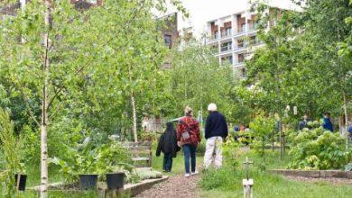 Photo of Voorbeeldige initiatieven voor de nieuwe gemeenteraad in Zwolle