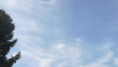Photo of Vandaag zon en wolken met kans op een enkele bui