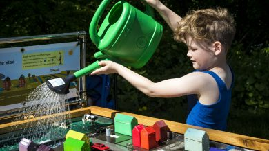 Photo of Thema duurzaamheid bruist op de familieweide tijdens Bevrijdingsfestival Overijssel