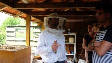 Photo of Video – Een leerzame ochtend over het houden van bijen bij De Schellerhoeve