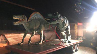 Photo of Interview: Wie zijn de ontvoerders van de Dino's?