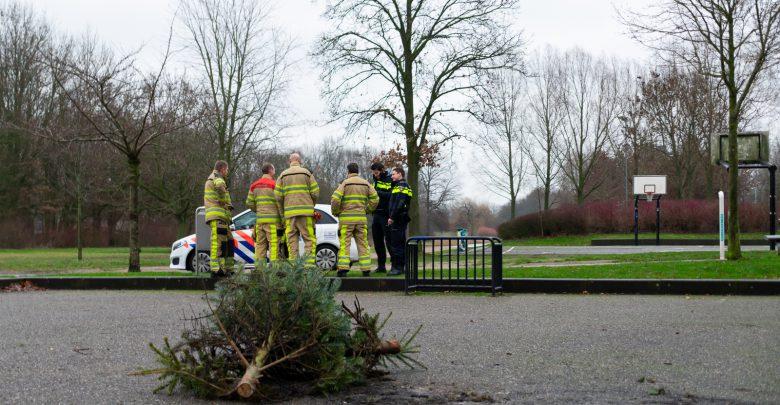 Photo of Kerstbomen in brand gestoken in Park de Wezenlanden