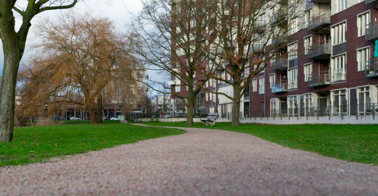 Photo of Fermate is voetgangersvriendelijk wandelpad rondom Wavin vijver rijker