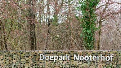 Photo of D66 en PvdA willen snel duidelijkheid over openstelling Nooterhof