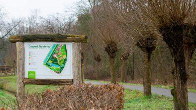 Photo of Doepark Nooterhof weer open? Help mee als vrijwilliger!