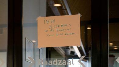 Photo of Let op: 'Vleermuis in de raadzaal, deuren dicht houden'