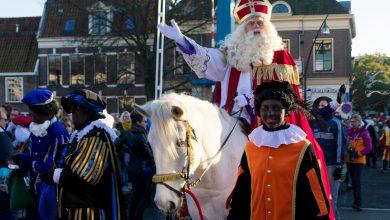 Photo of Zwolse 'paard van Sinterklaas' in de race voor 'Leukste oude paard van Nederland'