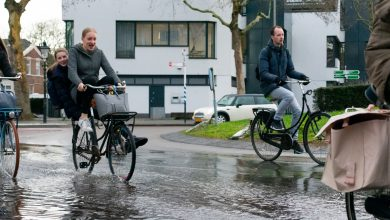 Photo of Overwegend bewolkt