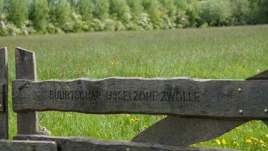 Photo of Mooi Zwolle: Struinen door groen Zwolle-Zuid