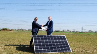 Photo of Realisatie zonneweide Hessenpoort in zicht