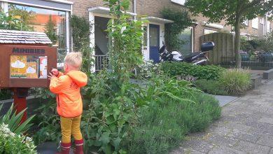 Photo of Minibibliotheekjes in Zwolle houden dit weekend open dagen
