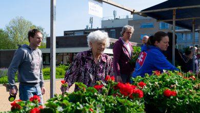 Photo of Berkum zet de bloemetjes buiten voor betere toekomst Roemeense kinderen
