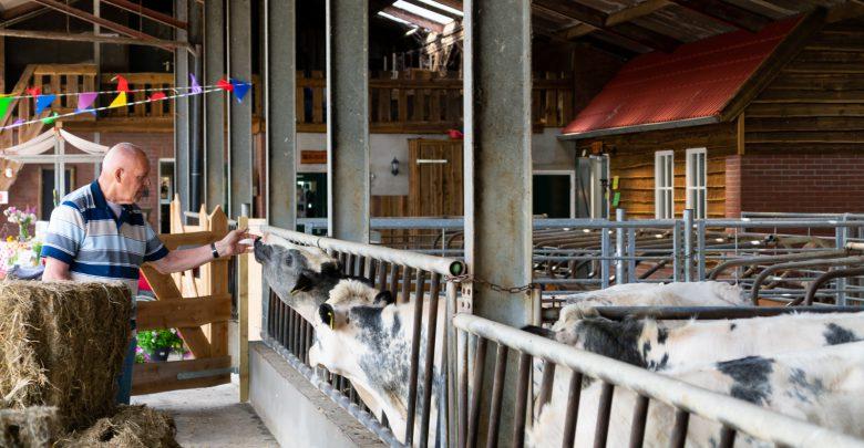 Photo of Goed bezochte open dag zorgboerderij Molenzicht