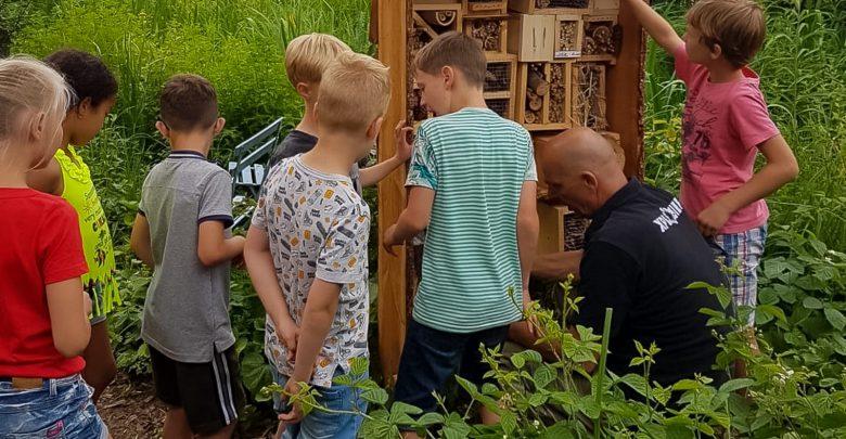 Photo of Eerste 'Woest' insectenhotel op Biologie Plus School de Werkschuit
