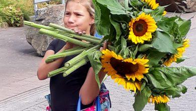 Photo of Kinderen delen zonnebloemen uit in Zwolse zorgcentra