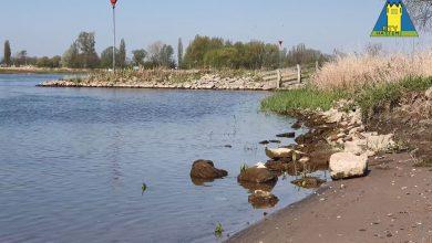 Photo of Voerman Struinpad in uiterwaarden Zwolle Zuid officieel geopend