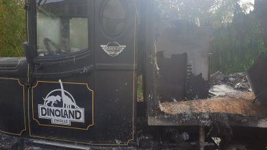 Photo of VIDEO UPDATE Foodtruck gaat in vlammen op bij Dinoland; Park korte tijd ontruimd